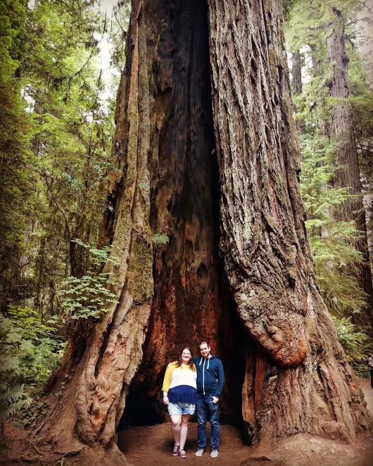 TheBig30-Redwood
