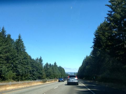 Washington Views