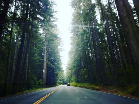 Northern California Scenery